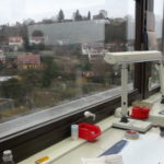 ドイツ、チュービンゲン大学レポート【その2】