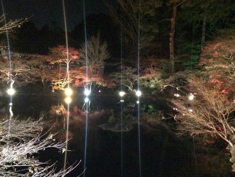 秀吉の夢見た紅葉の宴