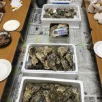 豪華な牡蠣パーティー